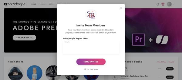Invite team members modal