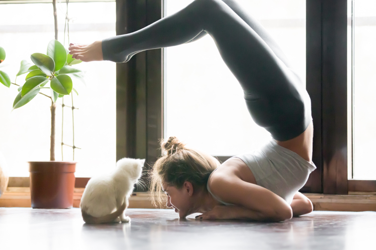 Young-woman-stretching-and-staring-at-kitten